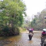 Day2-1:メーホンソン1Dayツアーに参加~エレファントキャンプで象乗り、カレン族の村へ