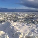 Day2-2:オホーツク流氷館へ、流氷観光砕氷船 おーろらでオホーツク海クルーズ